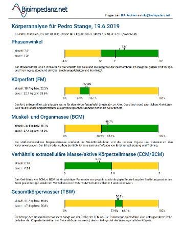 Seite 1 der PDF-Auswertung der BIA App